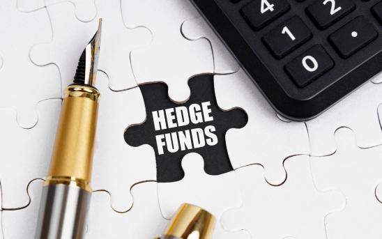 hedge fund puzzle